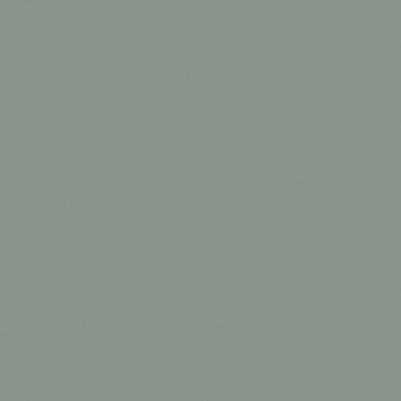 205-Laccato-Grigio-Fossile