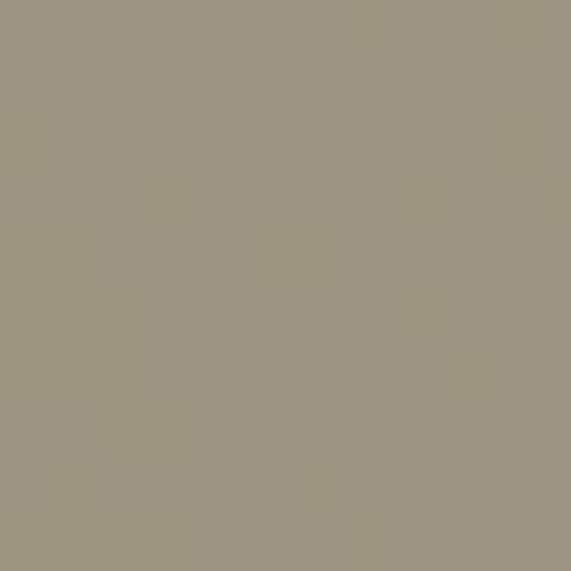 verde lichene 096